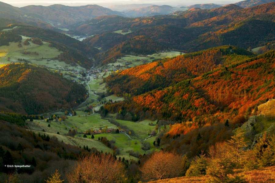 Belchen Mountain